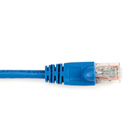 CAT6PC-025-BL