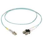 EFN010-SCLC