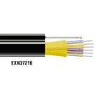 EXN37217