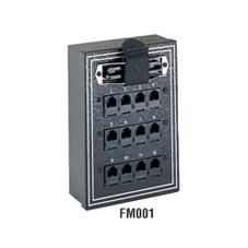 FM001